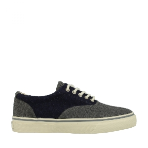 Sperry Striper CVO Wool 0282434